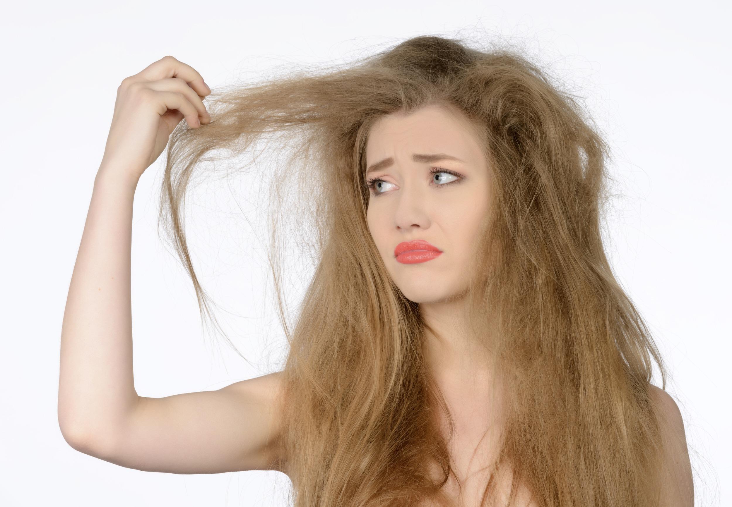 Excelentes tratamientos-naturales-para-el-cabello-seco-áloe-vera
