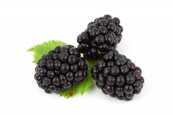 Alimentos-prácticos-para-rejuvenecer-la-piel-moras-1024x683_opt