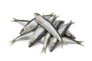 sardina y los alimentos que ayudan a eliminar la celulitis