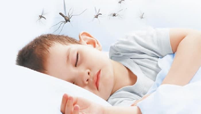 el dengue en niños