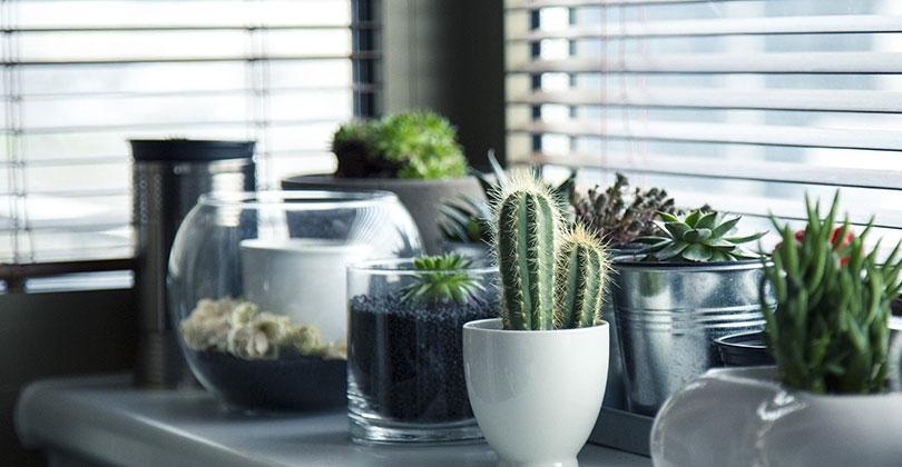 Consejos-para-la-decoracion-de-tu-patio-pequeño