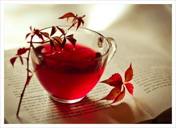 té rojo o té verde para adelgazar
