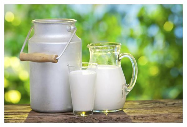 Beneficios de la leche sin lactosa