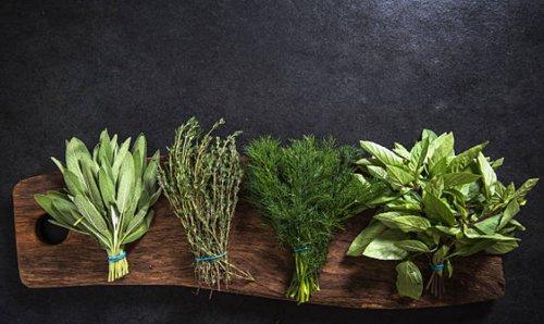 hierbas sorprendentes que te servirán para bajar de peso