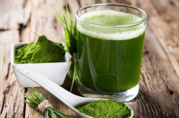 Conoce los beneficios de incluir algas en tu dieta