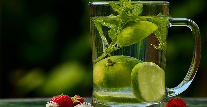 dieta-del-limon-para-el-estomago
