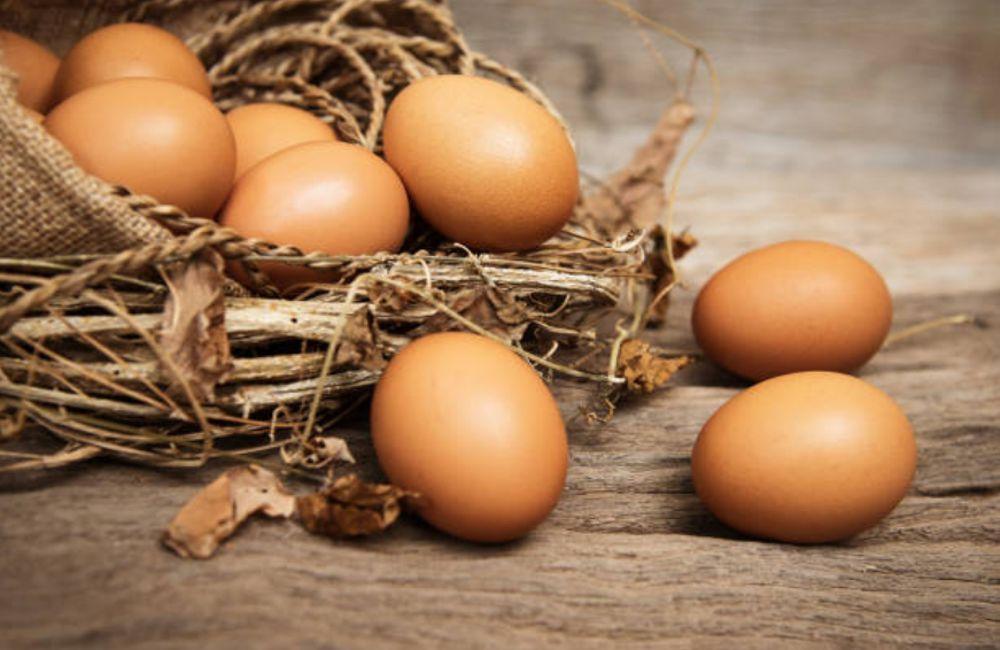 Cuáles son los huevos orgánicos
